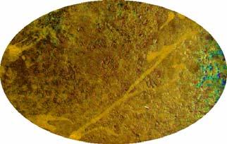 Aged Metal Rust
