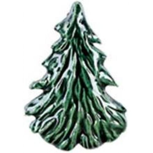 Mountain Spruce