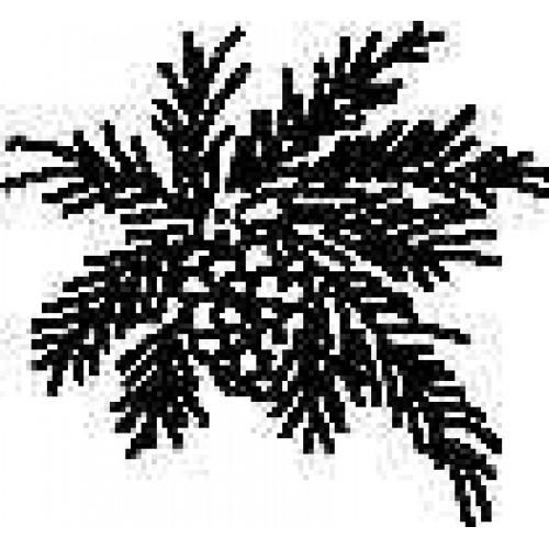 """SS9 Pine Bough 1 1/4"""" x 1 1/4"""""""