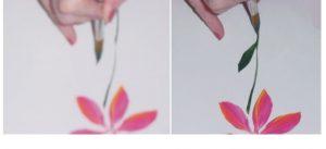 Flowerstep7