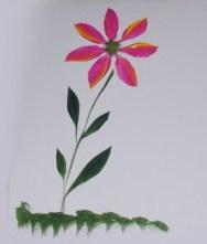 finishedflower